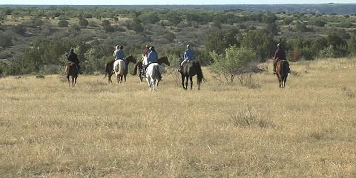 Equine rescue trail ride raises money to help neglected horses