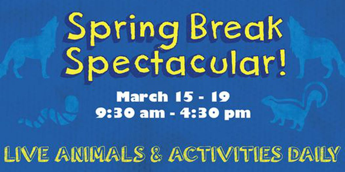 Don Harrington Discovery Center to offer Spring Break activities