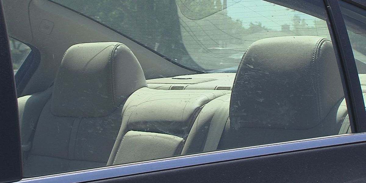 Group reaching out ahead of summer to warn parents of hot car deaths
