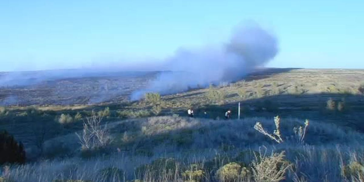 Grass fire near Boys Ranch contained