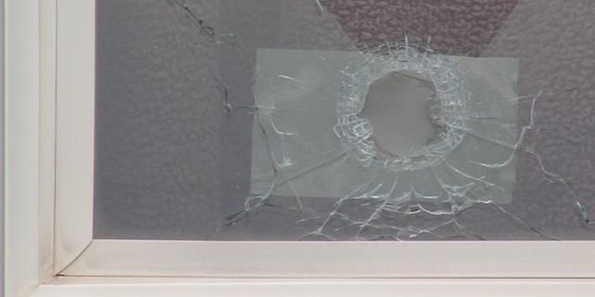 Bullets continue to hit homes in area of gun range