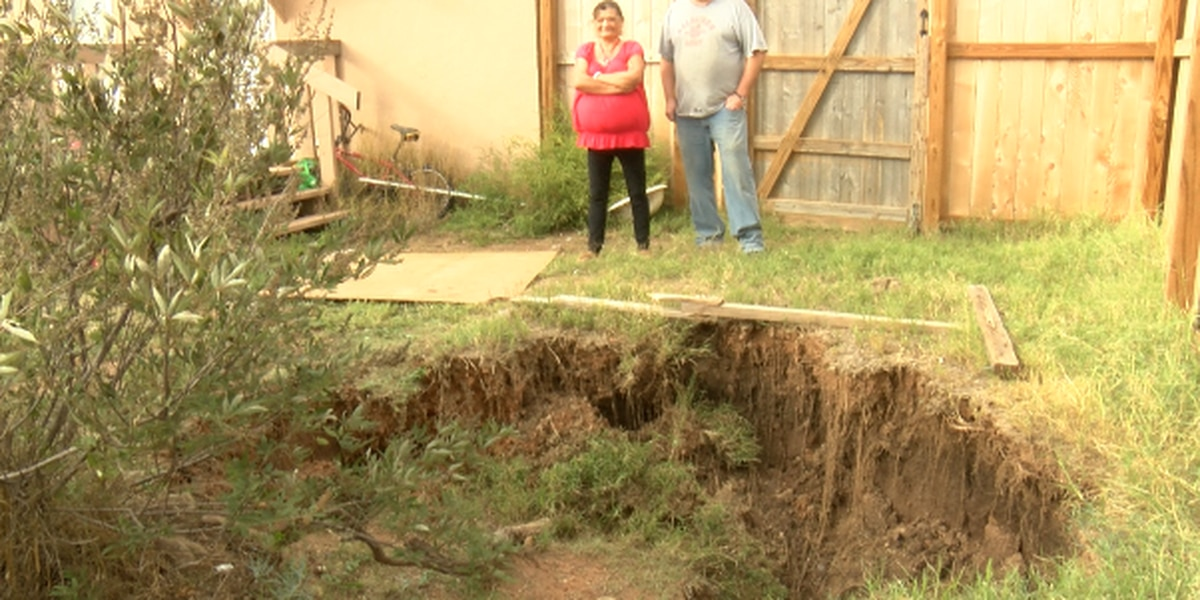 Family discovers 'sinkhole' in Bushland backyard