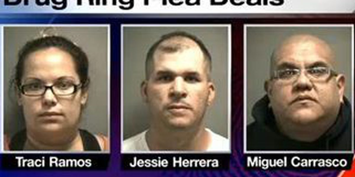 Seven more people agree to plea deals in connection with major drug ring