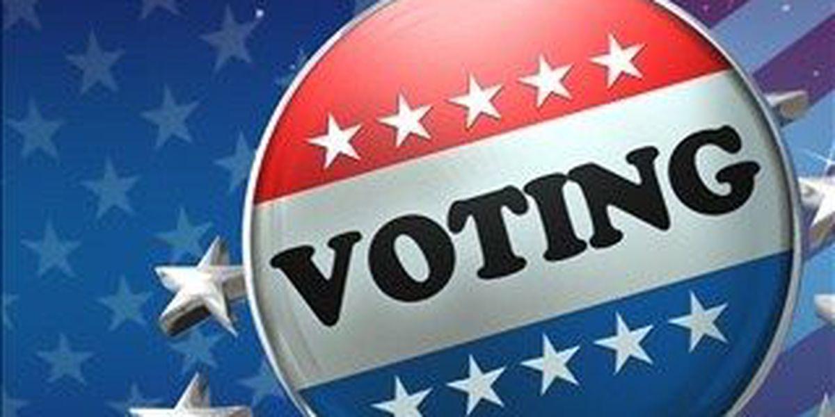 Nov. 3rd election hot topics