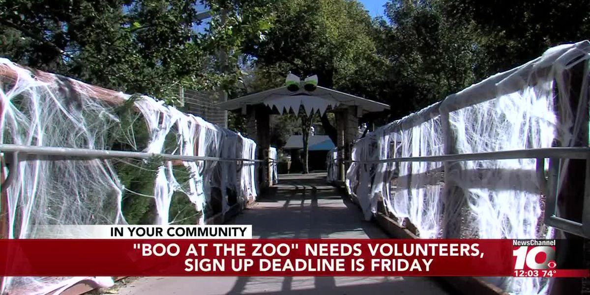 VIDEO: Deadline approaching for Boo at the Zoo volunteer sign up
