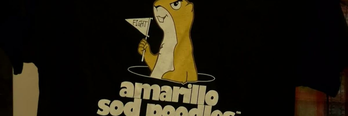 "Two local organizations selected to receive ""Our Amarillo Sod Poodles"" merchandise profits"