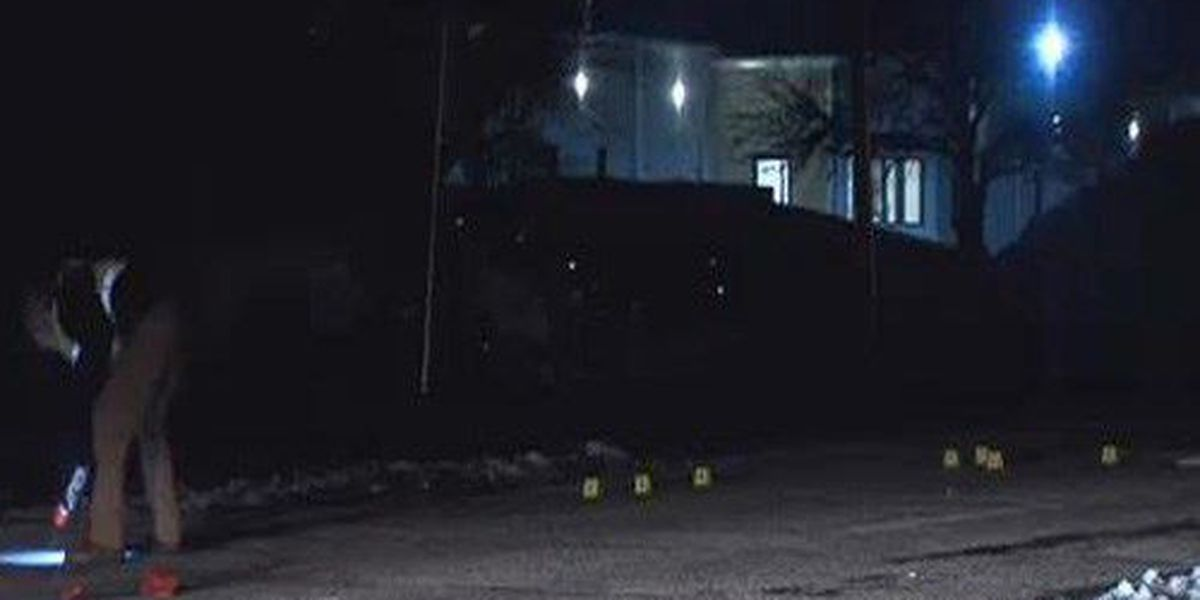 APD investigates first hit and run of new year