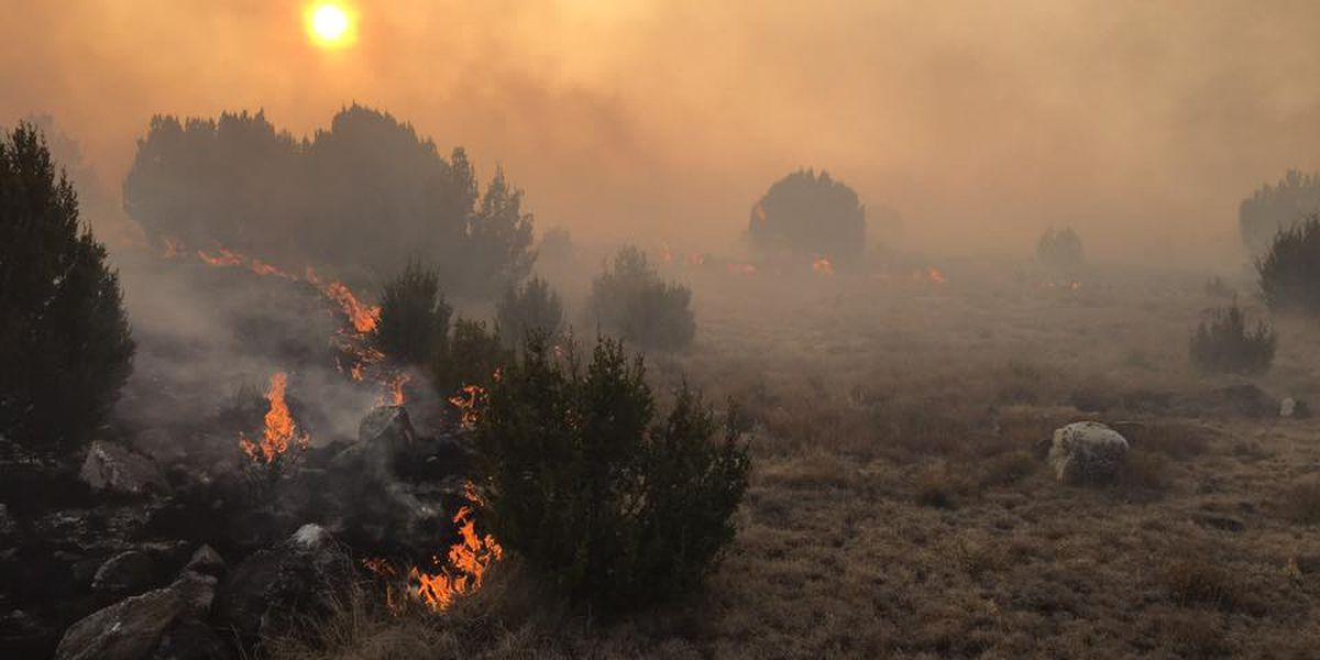 Insurers advise homeowners to protect themselves against fires