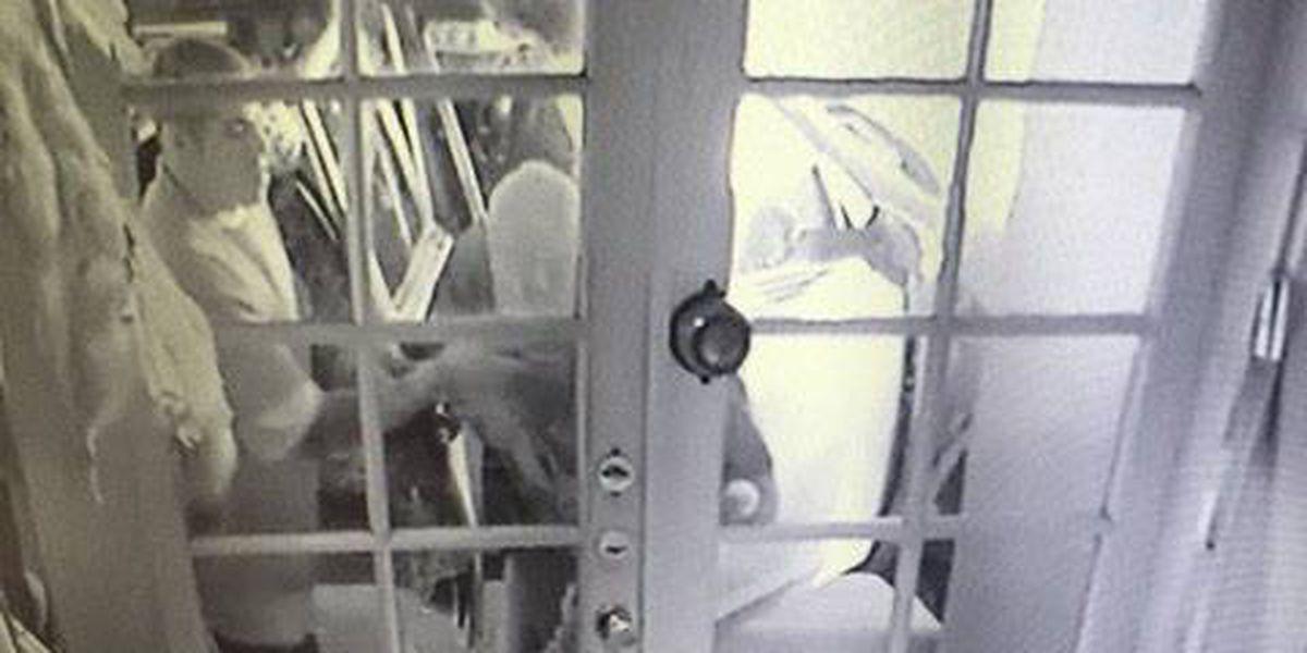 Clovis PD looking for burglary suspects