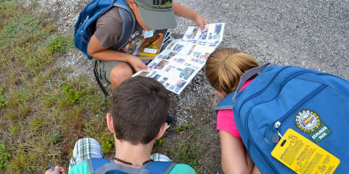 Learn more about nature and conservation as a Junior Ranger
