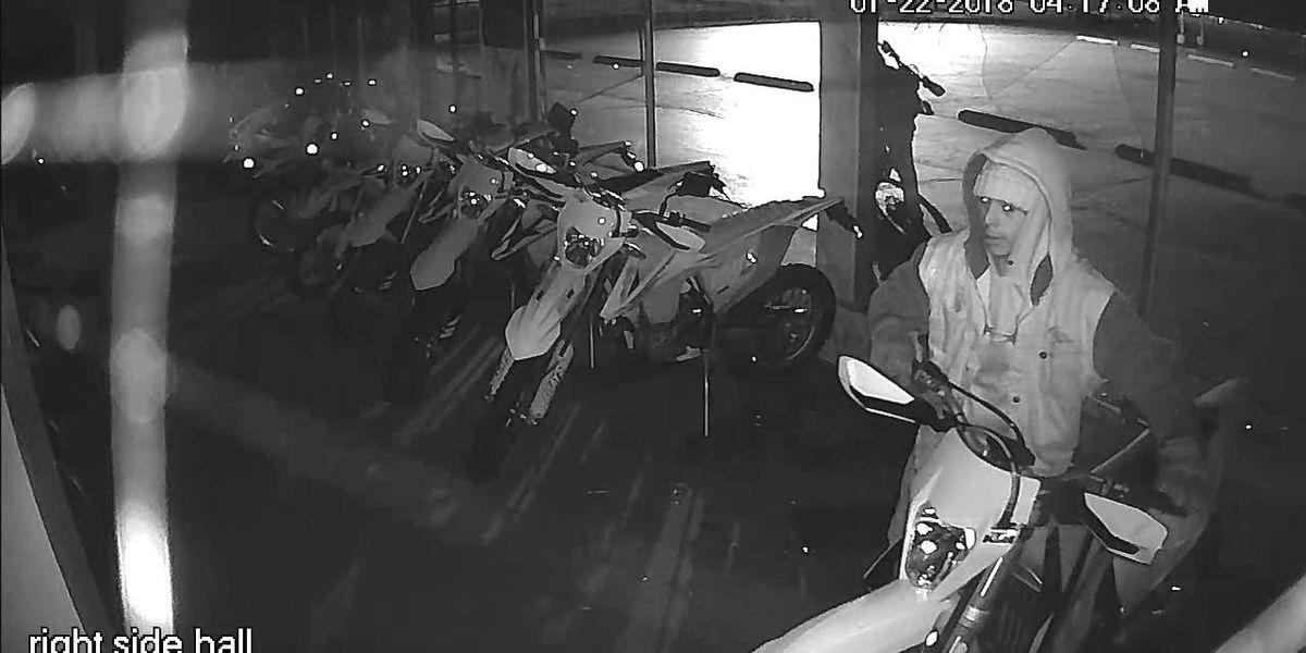 Amarillo police investigating burglary of Sharp's Motorsports