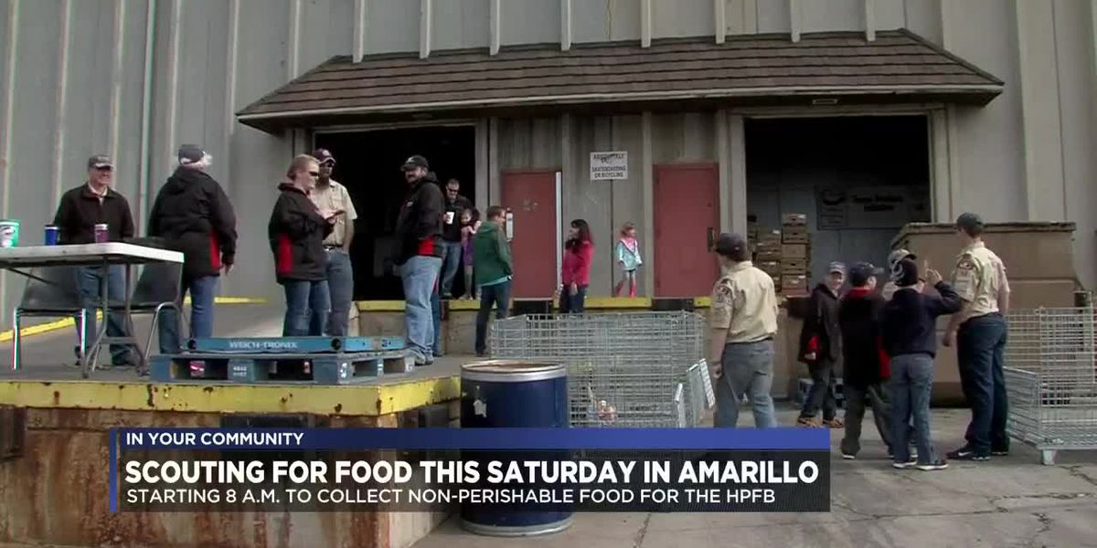 Scouts to canvass Amarillo to collect food for High Plains Food Bank