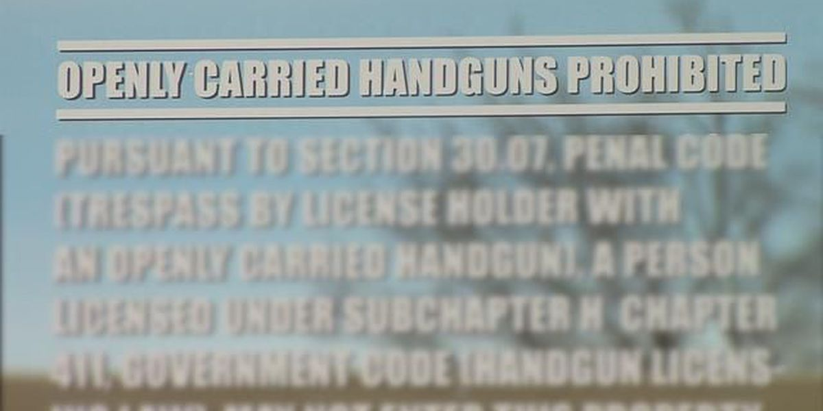 Senate bill backs Potter County's ban on open carry in courthouse