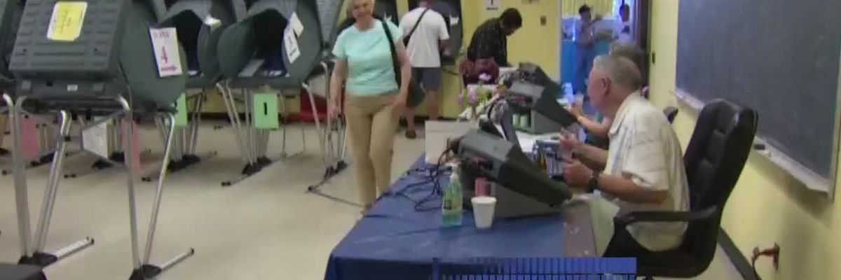 VIDEO: Officials: Voting system secure despite viruses infecting Potter County computers