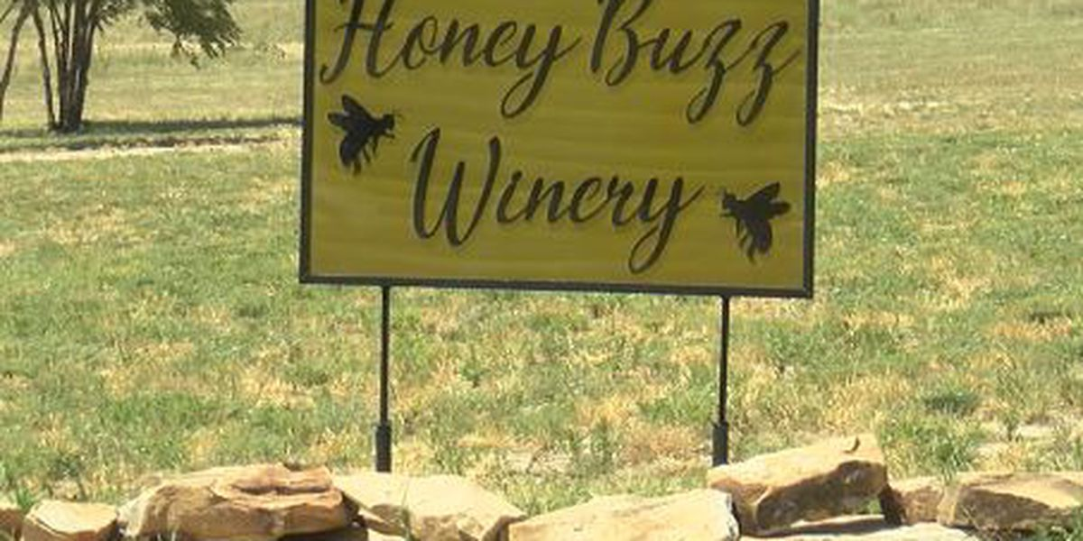 New businesses in Amarillo and Canyon: A buzzing winery, downtown coffee house and gas station
