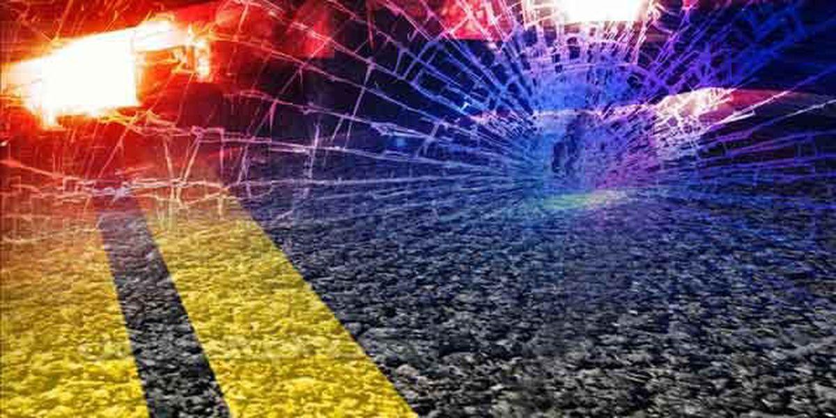 Area woman dies in fatal wreck