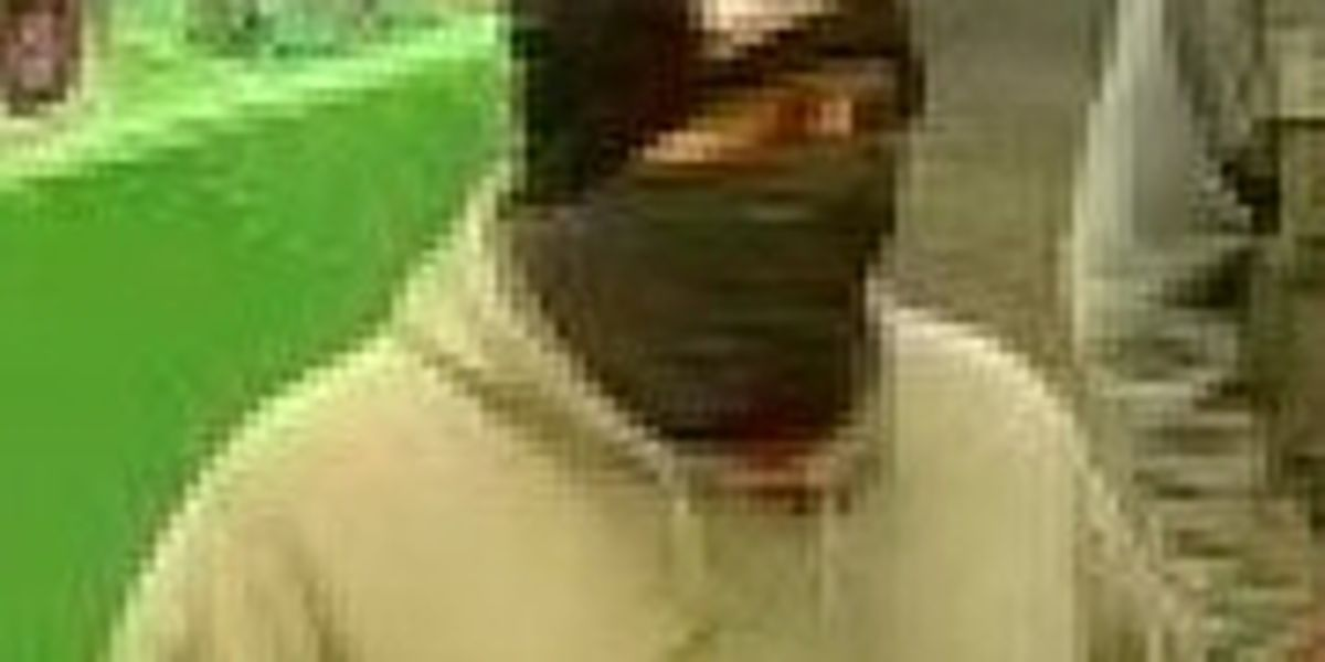 Police searching for suspect in armed robbery