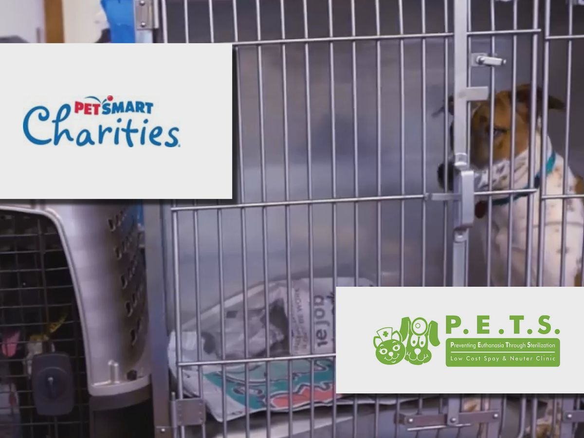 PetSmart Charities grants P.E.T.S. Clinic of Amarillo $250,000
