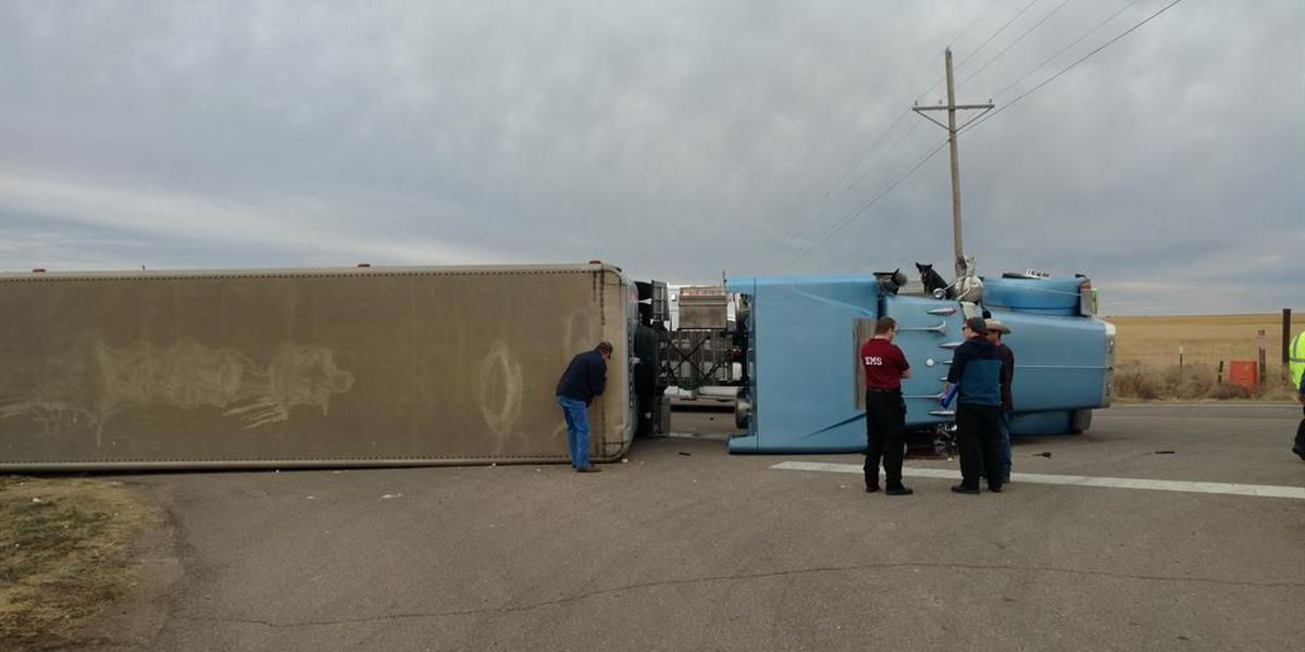 Cattle truck tips over on Highway 60