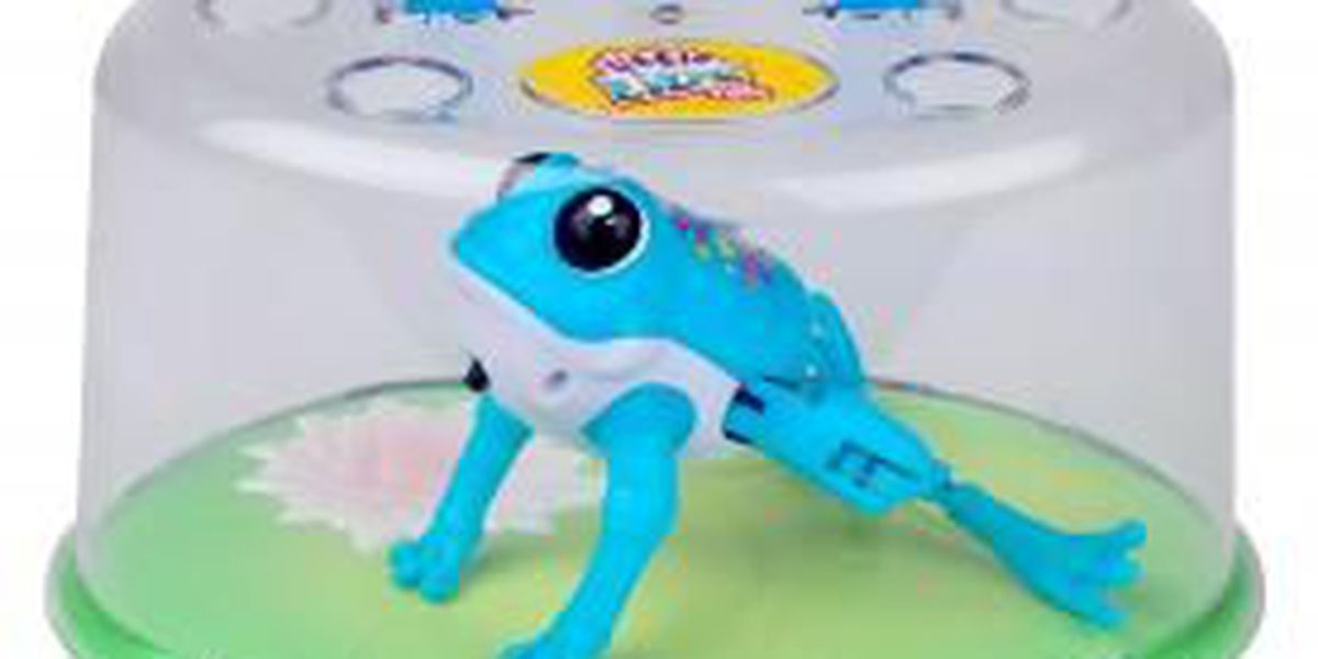 RECALL ALERT: Chemical leak from children's toy causes massive recall