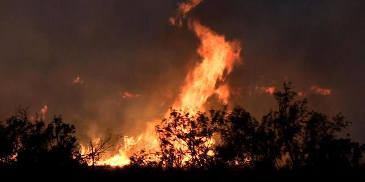 How to prepare for a wildfire evacuation