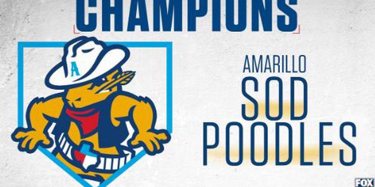 Sod Poodles hosting 2021 National Anthem audition at HODGETOWN