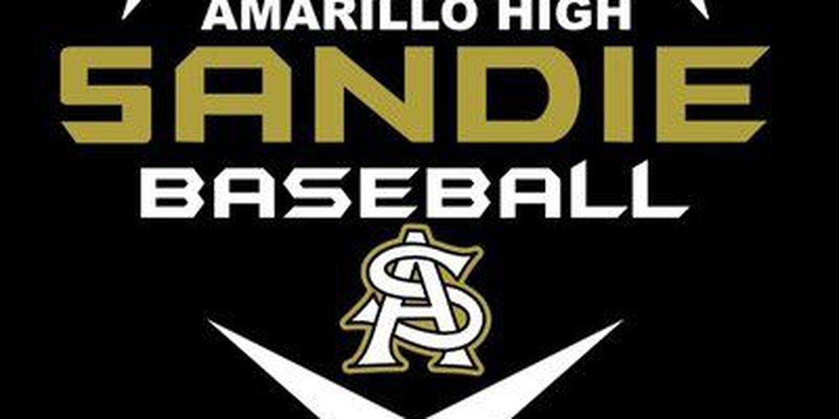 AISD to name Bushland Coach Randon Johnson to be the next Amarillo High head baseball coach