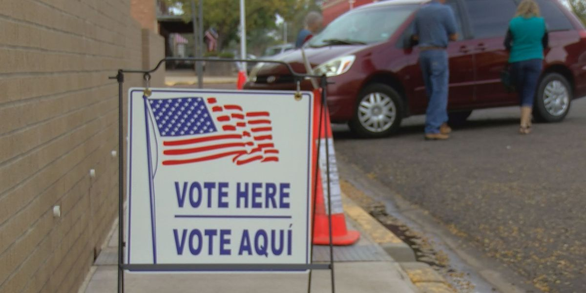 History of Texas voters