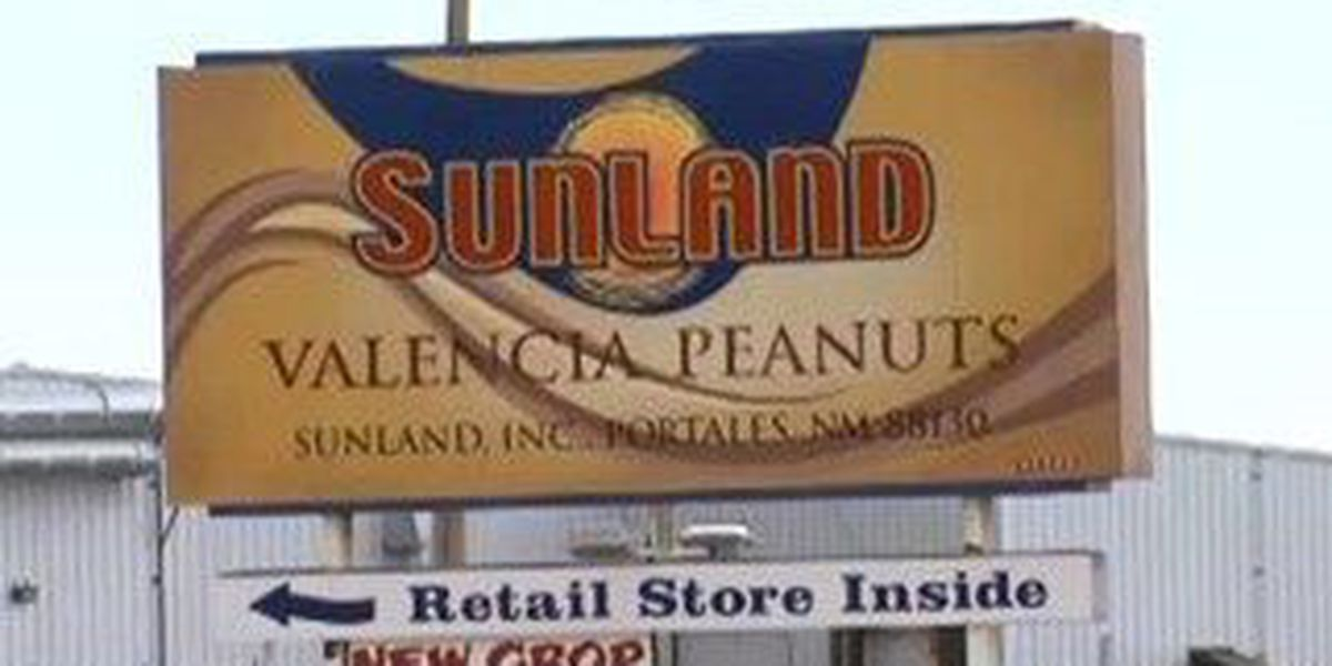 Judge orders new auction for peanut butter plant involved in salmonella outbreak