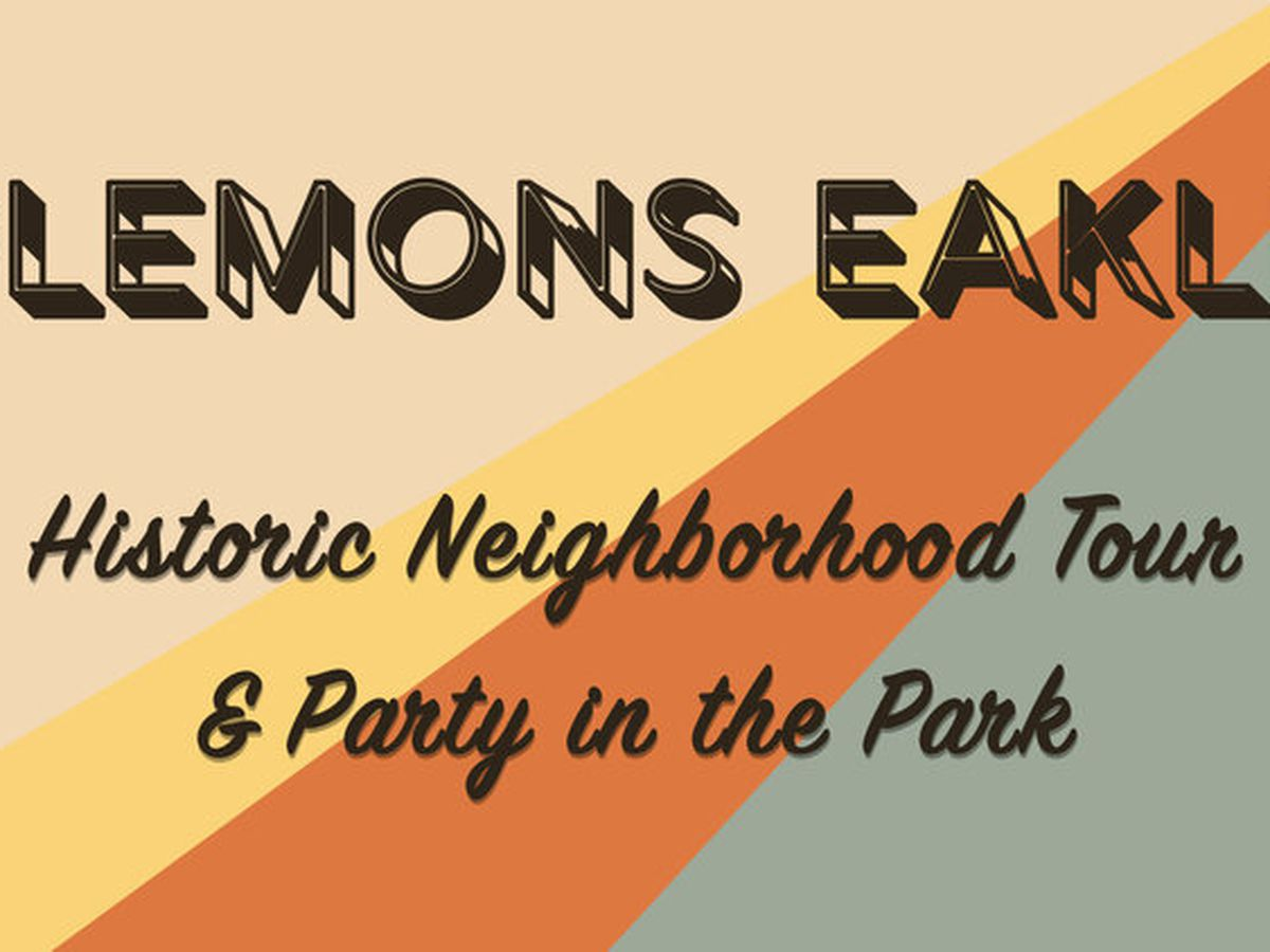 Plemons Eakle Neighborhood to host Tour & Party in the Park