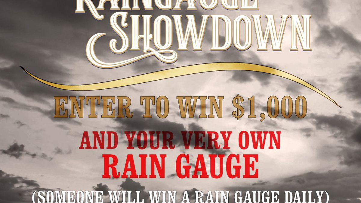 Rain Gauge Showdown