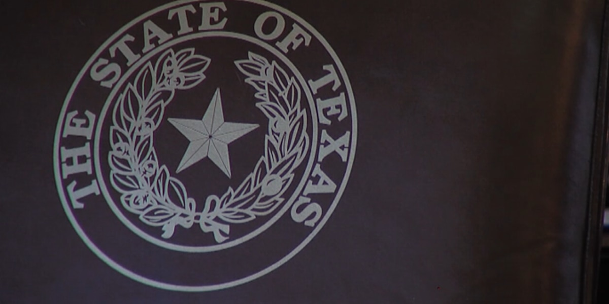 New year, new laws: changes to Texas laws in 2019