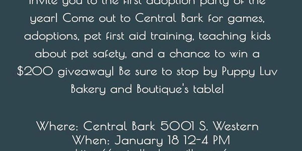 Amarillo Panhandle Humane Society hosting pet adoption party this weekend