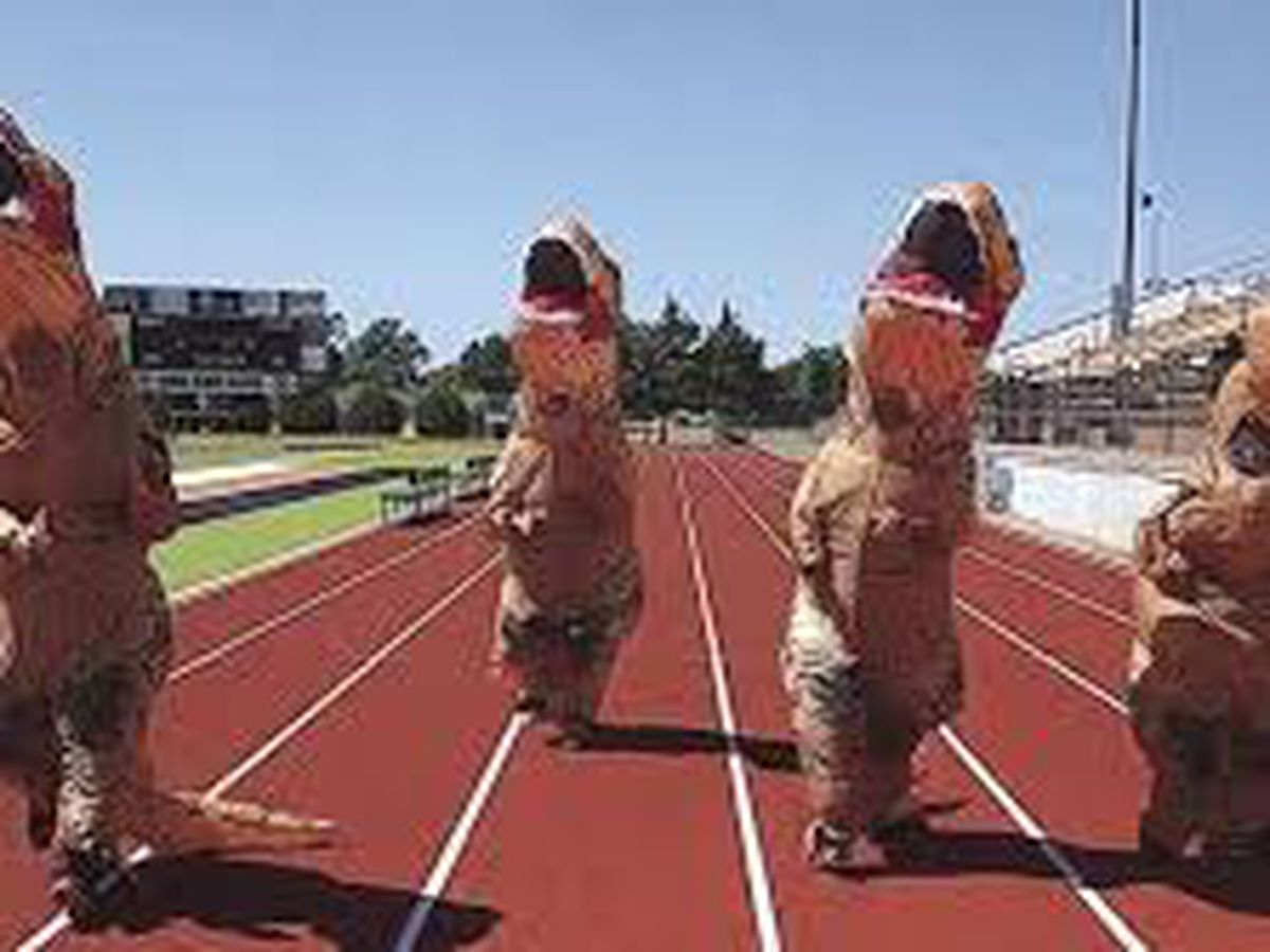 Running of the dinosaurs, Moore County Health Foundation raising money with a Dino Dash