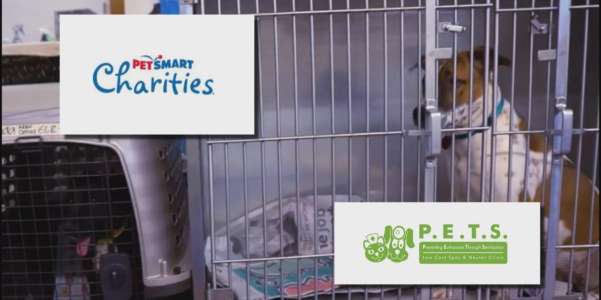 PetSmart Charities grants P.E.T.S. Clinic of Amarillo $250,000