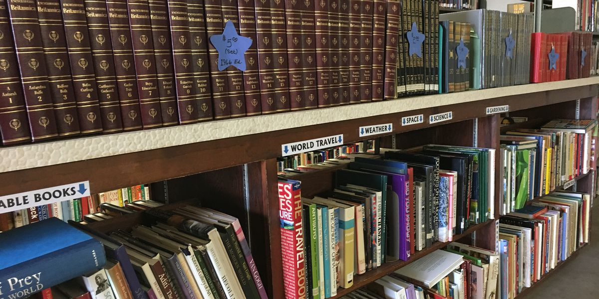 Turning a page for a good cause: Hutchinson Co. Library kicks off book sale to fund children's reading programs