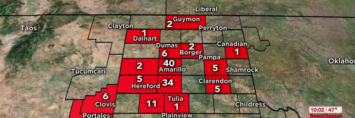 TX Panhandle COVID-19 case update, with 1 death reported in Potter Co. as of April 4