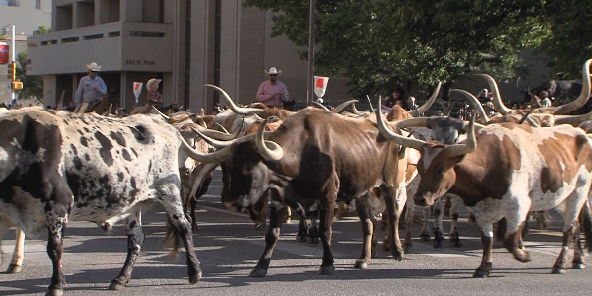 Coors Cowboy Club Ranch Rodeo kicks off, the cowboy way