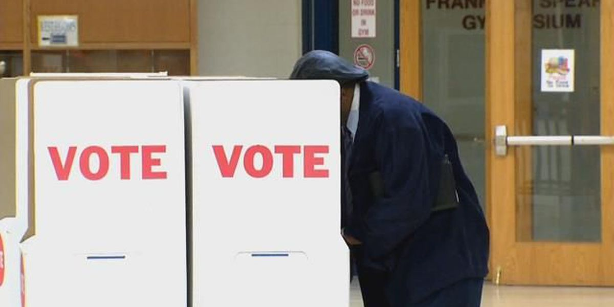 Area voter turnout encouraging for future elections