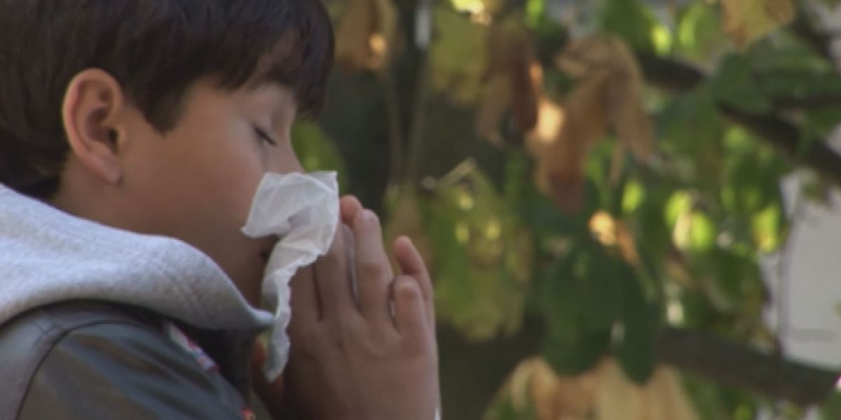 Early spring, recent rain worsening allergies