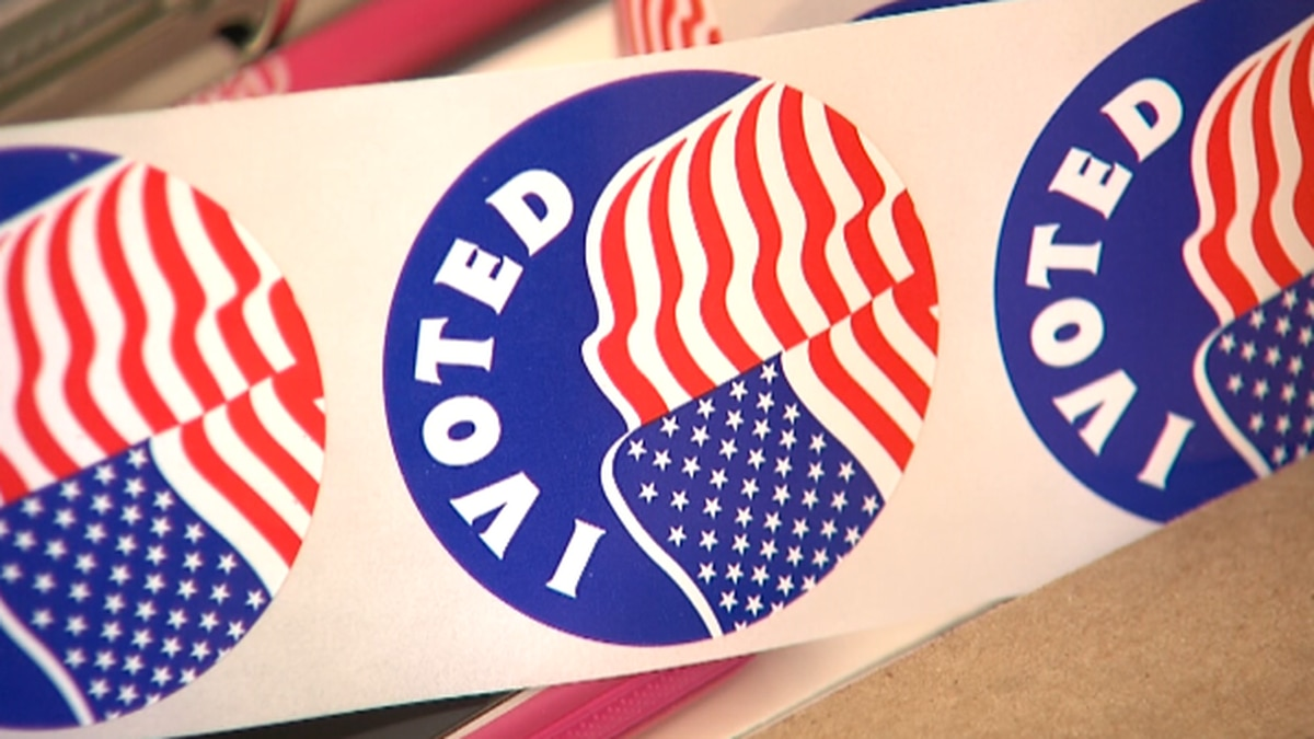 First day of early voting breaks records in Potter and Randall Counties