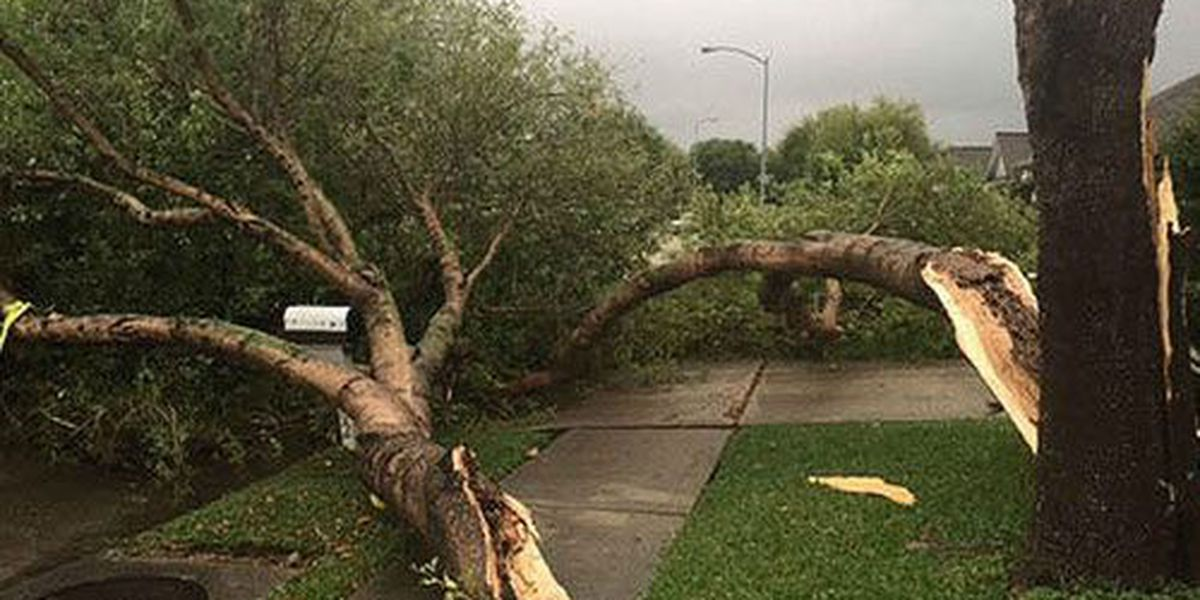 Spring storms in Texas caused more than $1.5B in losses