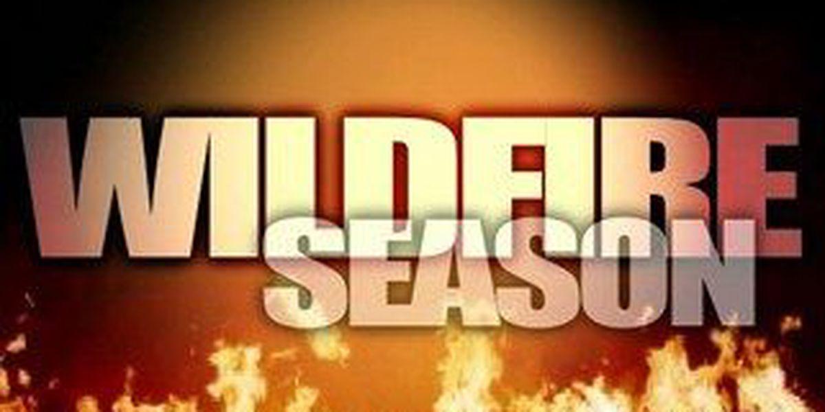 NM officials discuss wildfire season