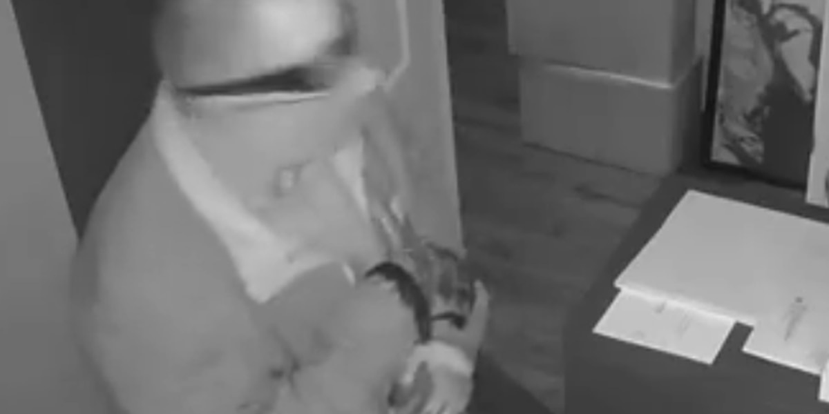 APD's 'Crime of the Week' seeking two business burglary suspects