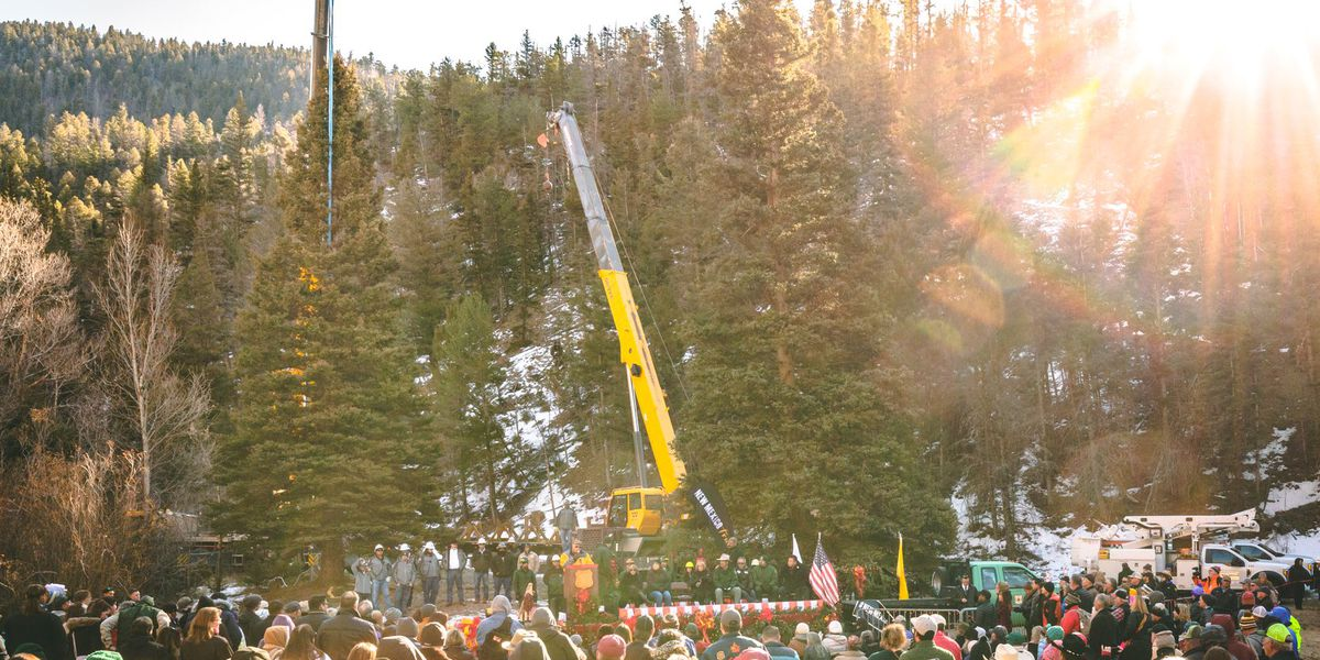 The US Capitol Christmas Tree is coming from Red River, New Mexico this year