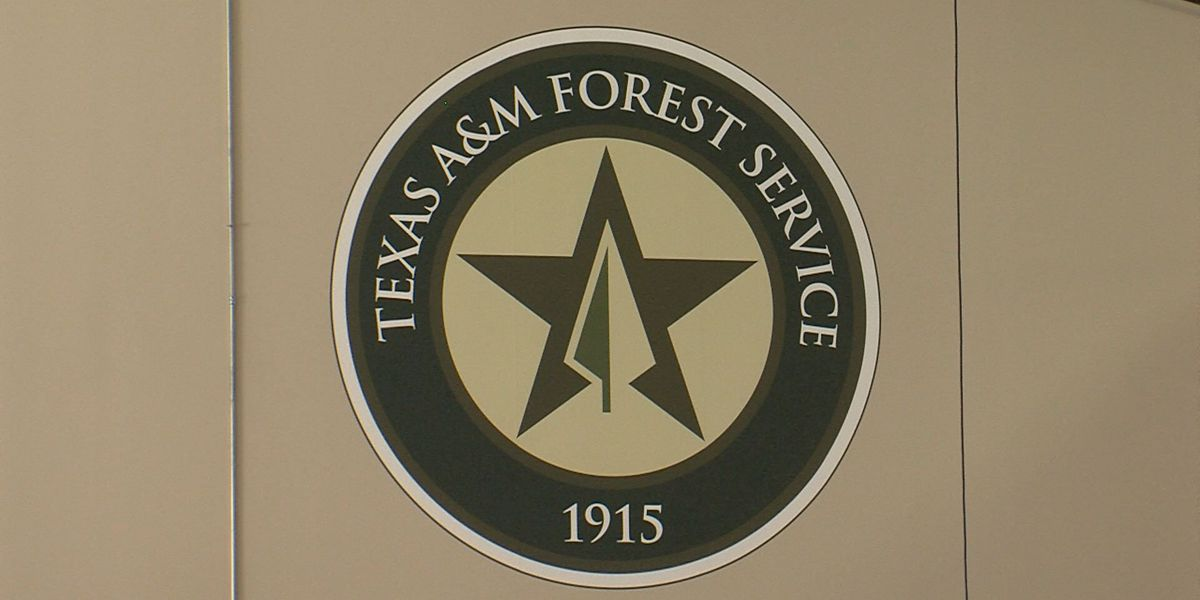 Forest service offers grants for land owners with vegetative fuel breaks