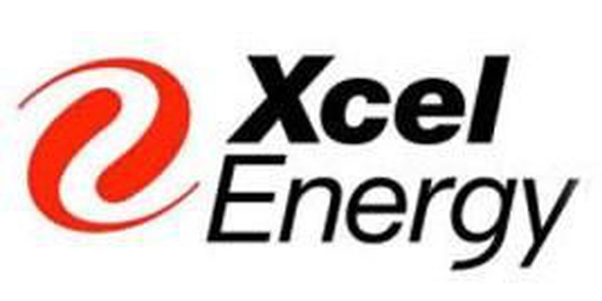 Xcel Energy presents check to area nonprofits