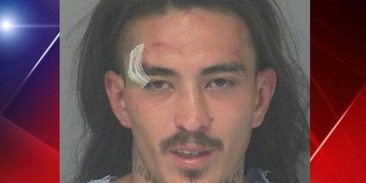 Apodaca faces multiple charges