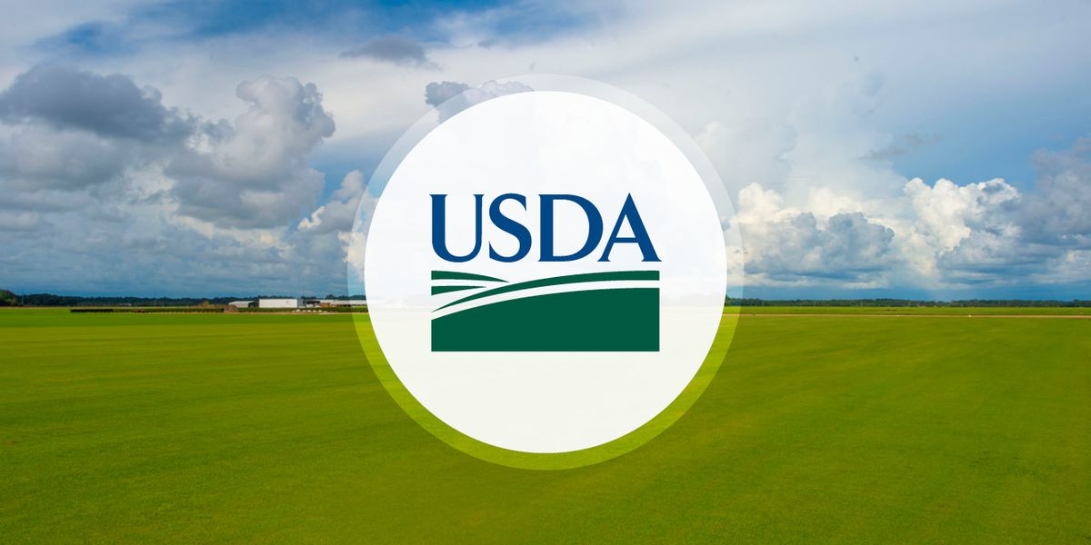 USDA taking applications for food assistance program to aid farmers, ranchers during pandemic