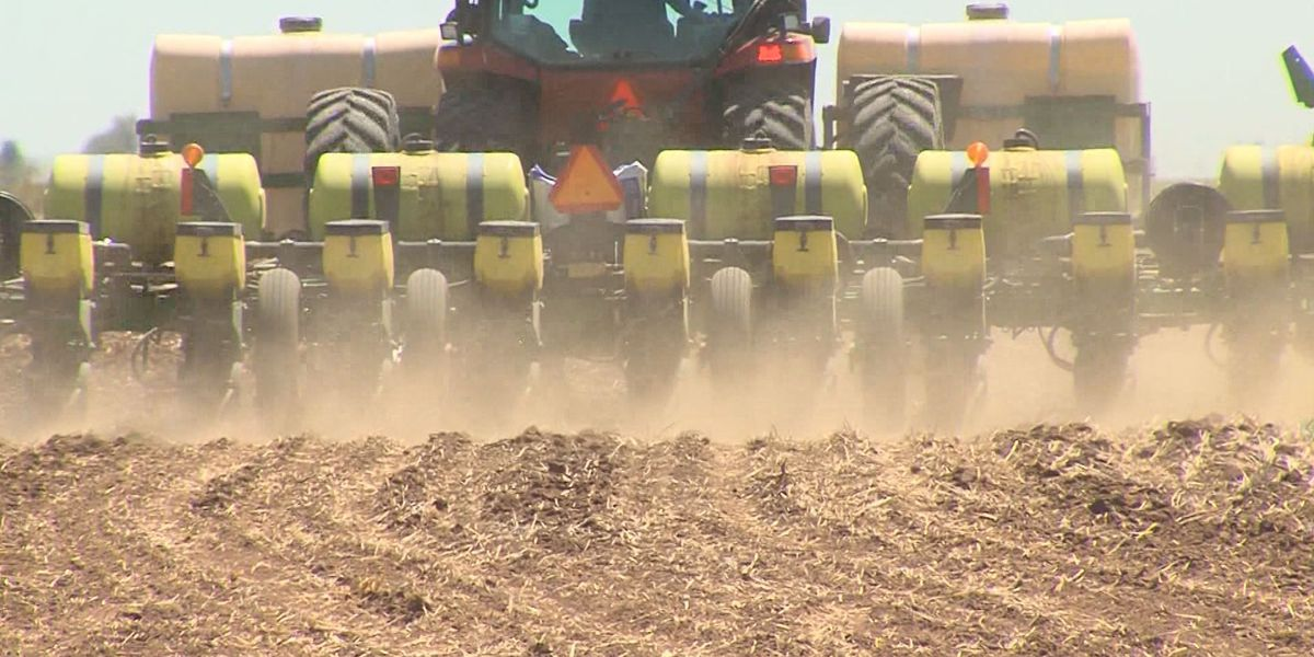 Farmers make adjustments for growing season due to drought
